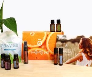 Seasonal Essentials Wellness